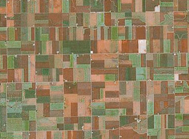 Treemap in Google Maps aerial